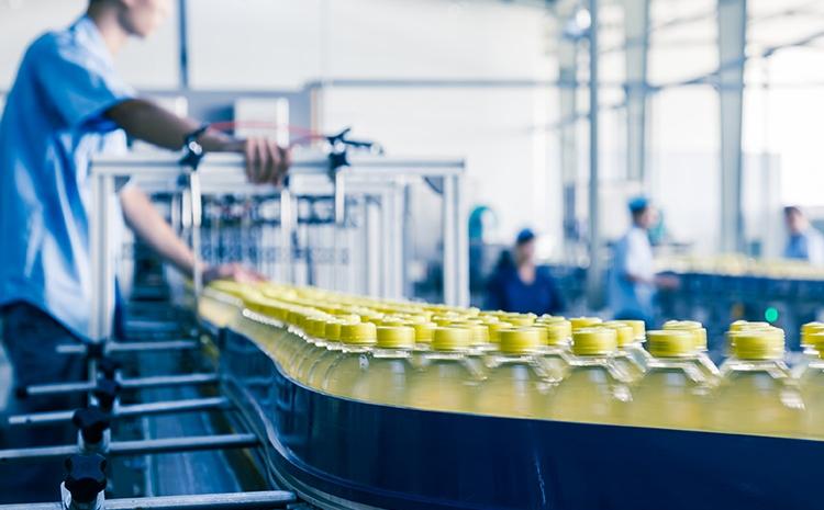 sistem erp lansare productie alimentara