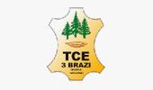 TCE3Brazi