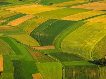 totalsoft extinde pachetul software destinat agriculturii cu o solutie pentru productia furajera